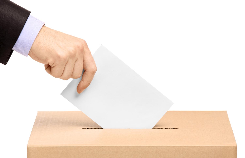Elezioni-Voto-Imc